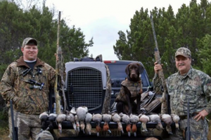 Dove Hunts
